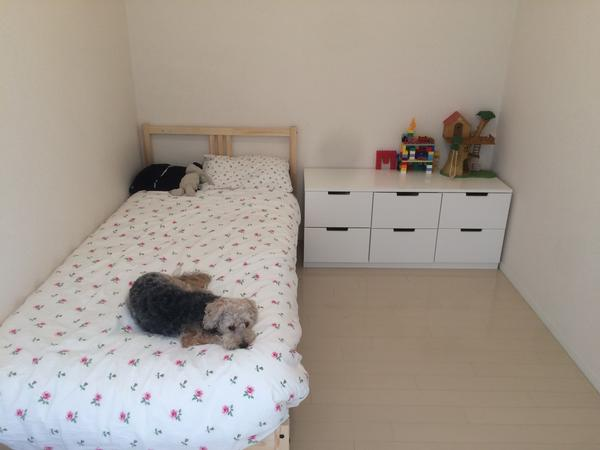 Housesitting assignment in Tatsumi, Japan
