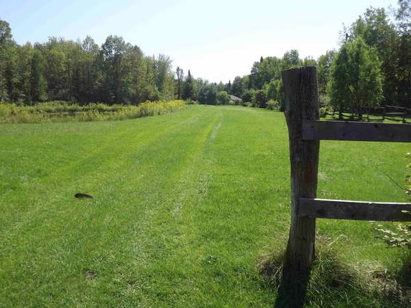 Housesitting assignment in Pefferlaw, ON, Canada