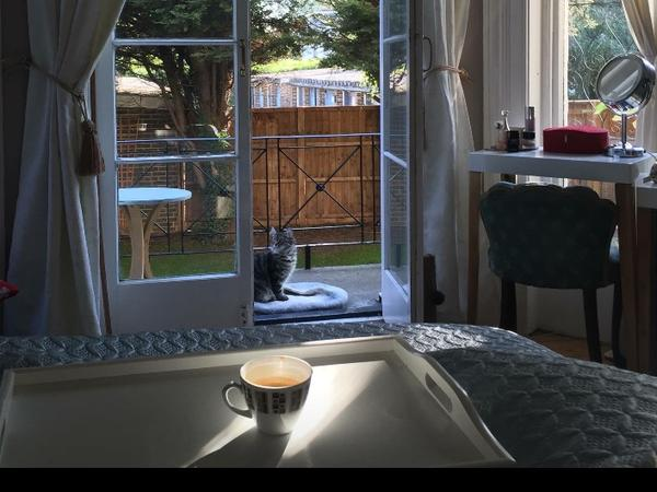 House  and cat sitter, Blackheath