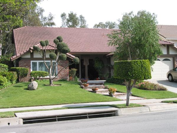 Housesitting assignment in Fullerton, CA, United States