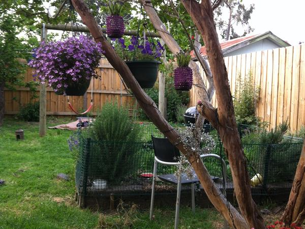 Housesitting assignment in Flemington, Victoria, Australia