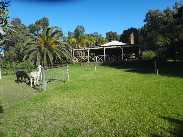 Housesitting assignment in Belhus, WA, Australia