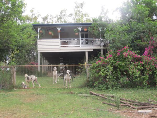 Housesitting assignment in Gatton, QLD, Australia