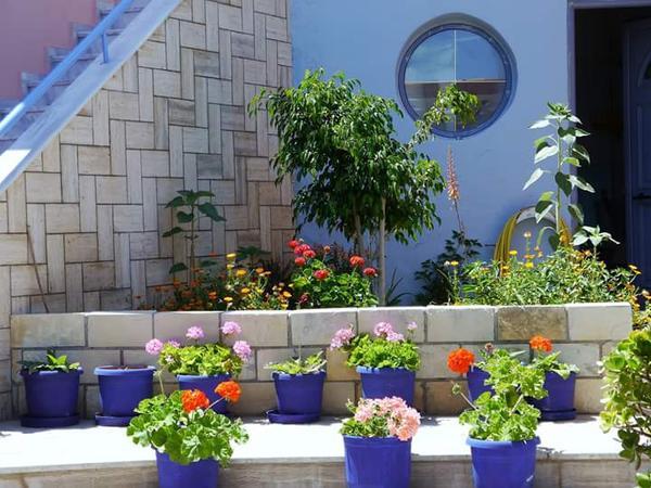 Housesitting assignment in Balíon, Greece