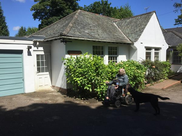 House and dog sitter for a month in Bath UK