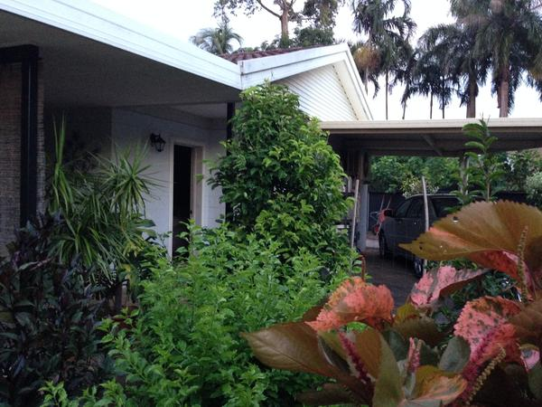 Housesitting assignment in Darwin, NT, Australia