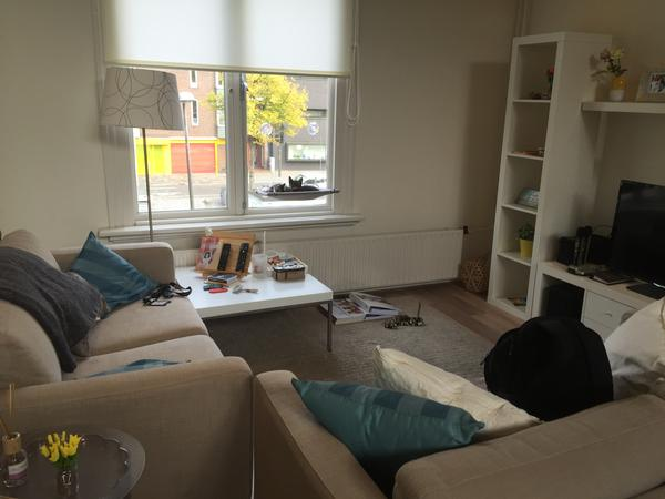 Housesitting assignment in Groningen, Netherlands