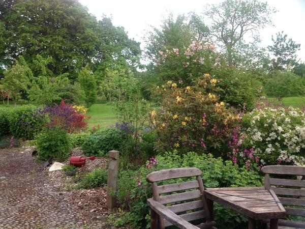 Housesitting assignment in Cromarty, United Kingdom