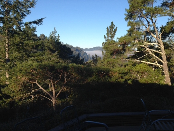 Housesitting assignment in Woodacre, California, United States
