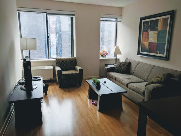 Two Sweet Cats in a Lovely Chelsea, Manhattan 1 Bedroom