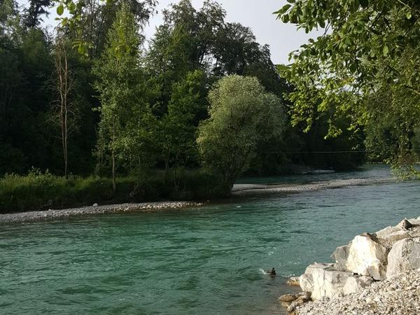 Housesitting assignment in Bremgarten, Switzerland