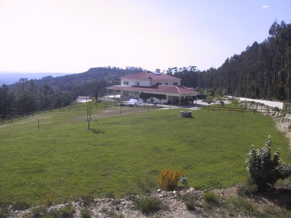 Housesitting assignment in Coja, Portugal