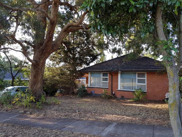 Housesitting assignment in Mount Waverley, VIC, Australia