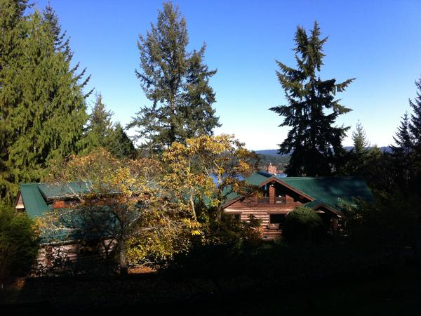 Salt Spring Island B.C. Pet/House Sit