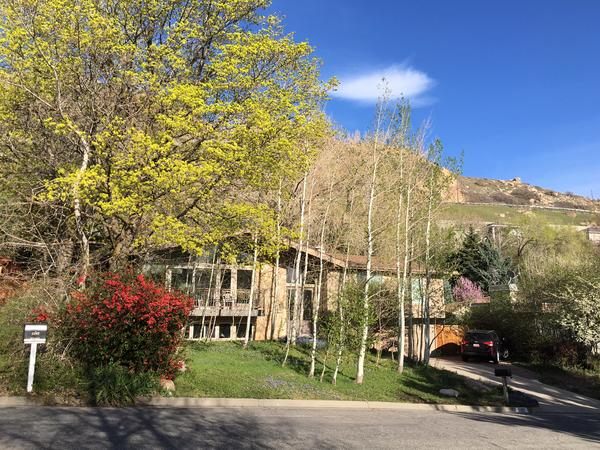 Housesitting assignment in Holladay, Utah, United States