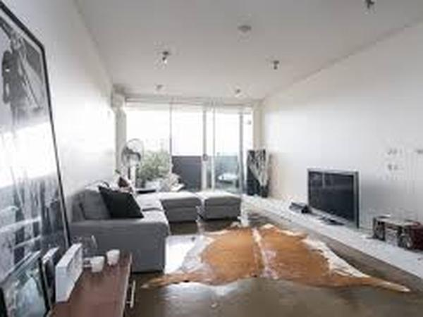 Funky 1 br St Kilda apartment and Dexter the cat
