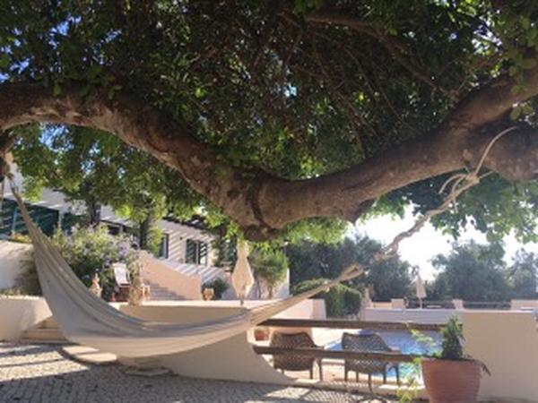 Pet and housesitter in the algarve