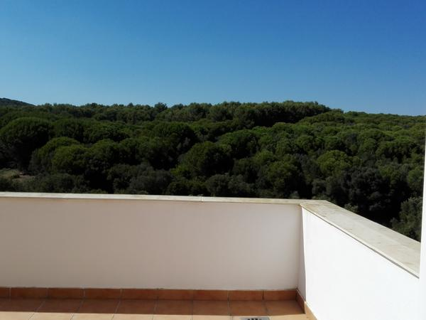 Housesitting assignment in Alcaidesa, Spain