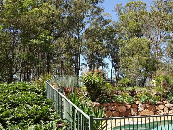 Housesitting assignment in Helensvale, Queensland, Australia