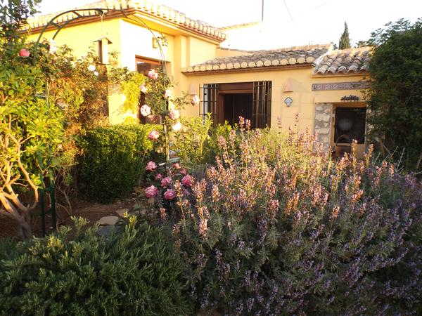 Housesitting assignment in Alicante, Spain