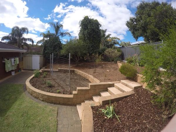 Housesitting assignment in Flagstaff Hill, SA, Australia