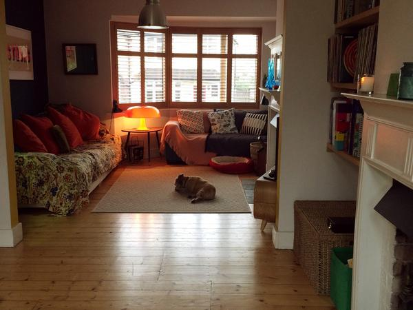 Pet/House Sitter needed in St Albans for 1 dog and 3 cats 5th April - 12th April