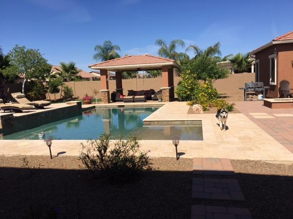 Housesitting assignment in Litchfield Park, AZ, United States