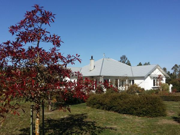 Housesitting assignment in West Eyreton, New Zealand