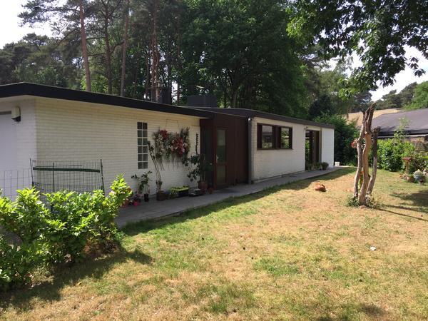 Housesitting assignment in Keerbergen, Belgium