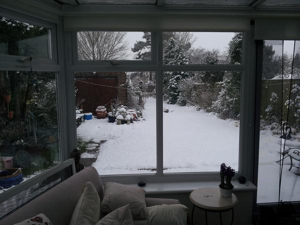 Housesitting assignment in Reigate, United Kingdom
