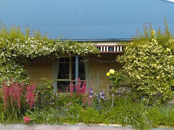 Housesitting assignment in Ulverstone, Tasmania, Australia