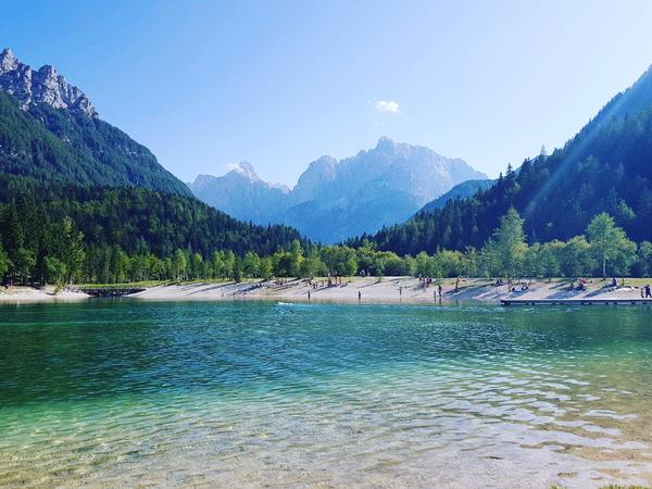 Housesitting assignment in Kranjska Gora, Slovenia