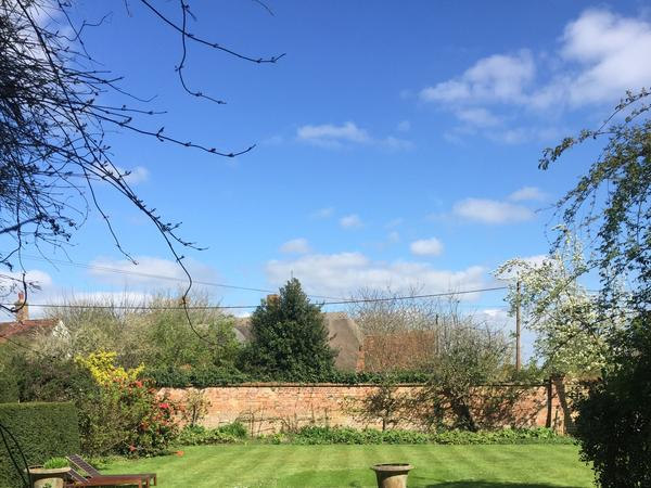 Housesitting assignment in Oxford, United Kingdom