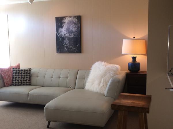 Cat-sitter /One Bedroom apartment on Lake Washington