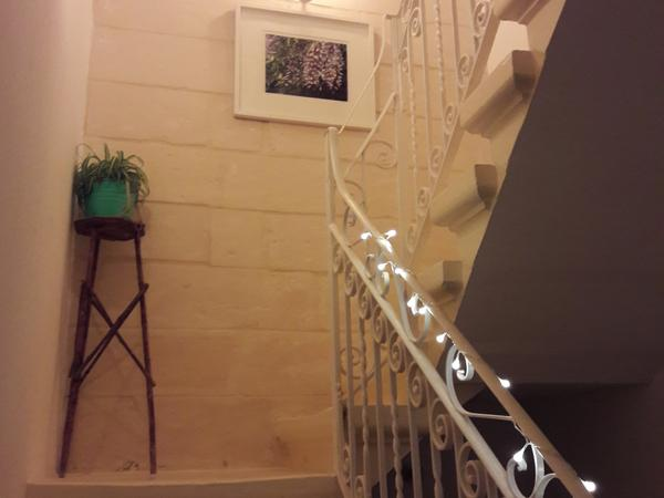 Housesitting assignment in Sliema, Malta