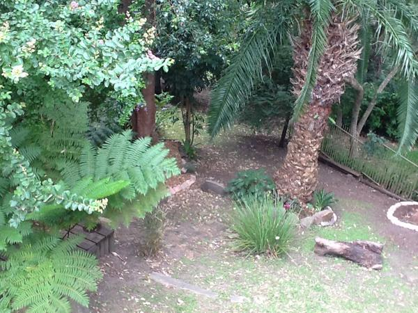 Housesitting assignment in Gosford, NSW, Australia