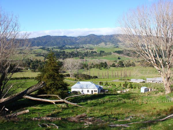 Housesitting assignment in Pohangina, New Zealand
