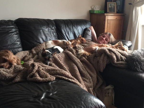 Housesitting assignment in Middlewich, United Kingdom