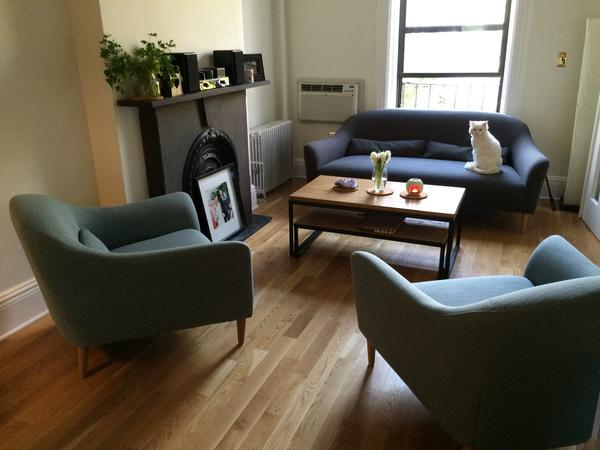 Park Slope, Brooklyn, NY: Looking for the purrrfect cat sitter for brownstone apartment