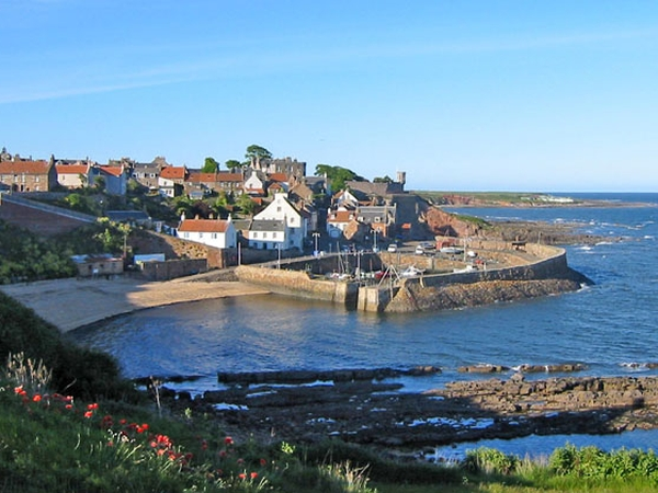 Pet/House sitter(s) required in Crail, Scotland