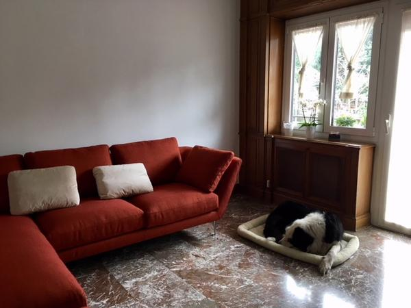 Housesitting assignment in Rome, Italy