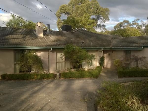 Housesitting assignment in Croydon, Victoria, Australia