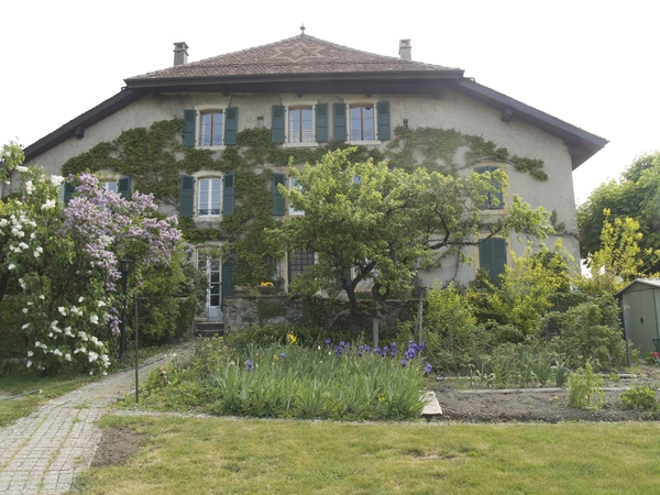Cat sitter in an old farmhouse in Penthalaz, near Lausanne