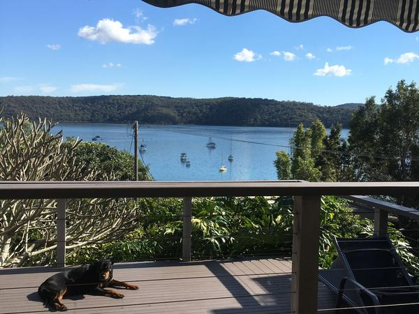 Housesitting assignment in Palm Beach, New South Wales, Australia