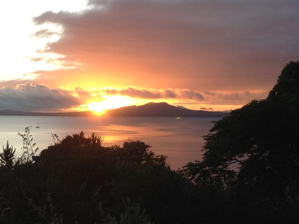 Housesitting assignment in North Shore, New Zealand