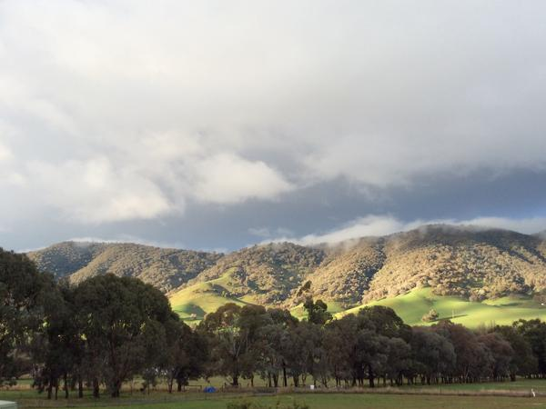 Housesitting assignment in Tumut, New South Wales, Australia