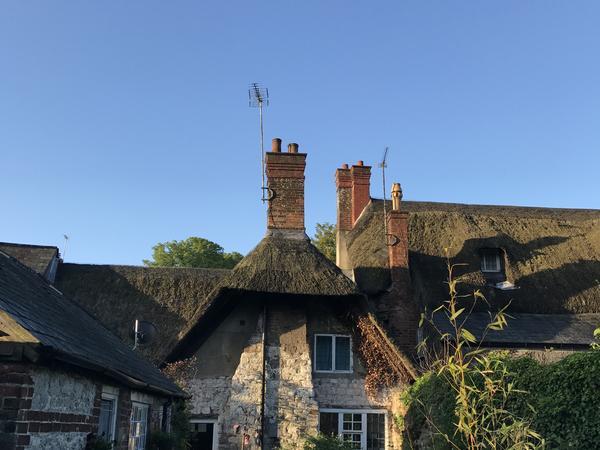 Housesitting assignment in Evershot, United Kingdom