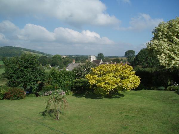 Dog, chicken and house sitting in rural North Dorset.