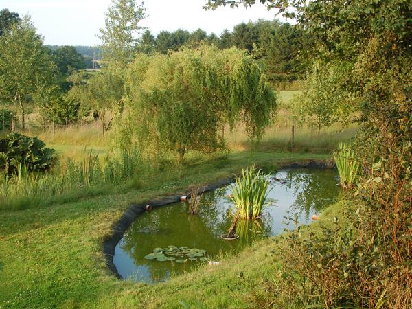 Spend a few days by the Norfolk Broads