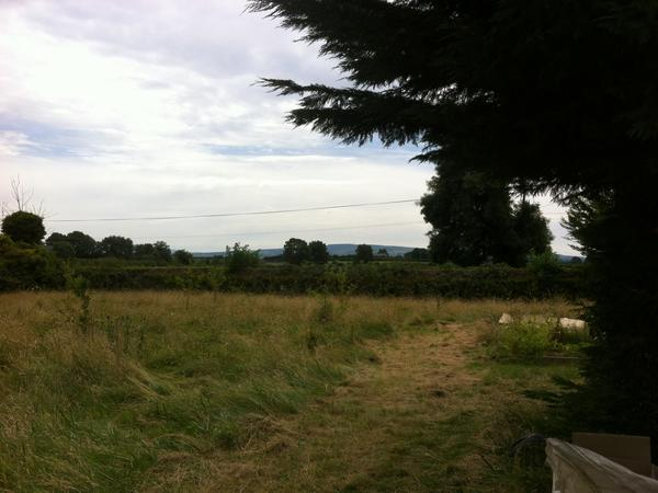 Housesitting assignment in Kilkenny, Ireland